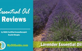 Lavender Essential Oil Review
