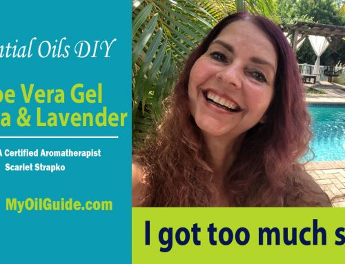 Aloe Vera, Jojoba Oil, Lavender Essential Oil Ointment DIY
